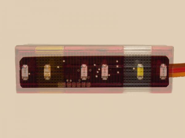 TAMIYA Mercedes 1838 und 1850L hinten